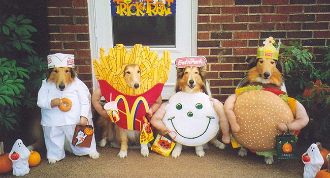 Article_DogCostumes_6